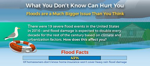Flood Insurance Facts Infographic