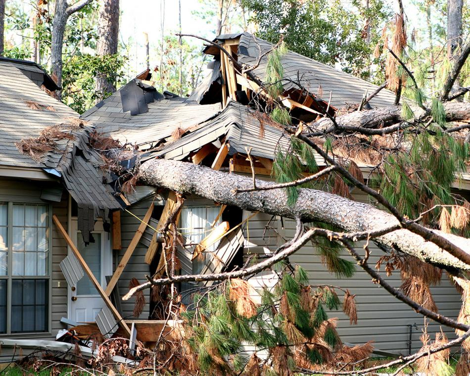 Tree falls on a house it's covered